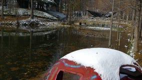 Reflexão na água, licença da floresta e da ponte do metasequoia que flutua no lago, ondinha, neve video estoque