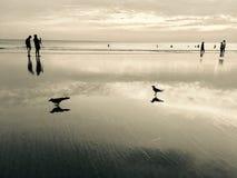 Reflexão na praia Kerala do varkala foto de stock