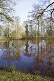 Reflexão no lago Fotografia de Stock Royalty Free