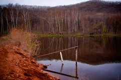 Reflexão no lago escuro do outono Foto de Stock Royalty Free
