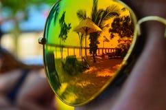 Reflexão nos vidros Fotos de Stock Royalty Free