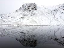 Reflexão perfeita de Harrison Stickle Imagens de Stock Royalty Free