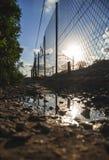 A reflexão perfeita do sol do verão imagem de stock royalty free