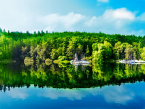Reflexão verde da floresta na água azul do lago Imagens de Stock