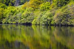 Reflexões 2 Fotos de Stock