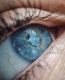 Reflexões Foto de Stock