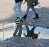 Reflexões após a chuva Foto de Stock Royalty Free