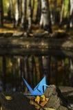 Reflexões azuis do guindaste e da água Foto de Stock