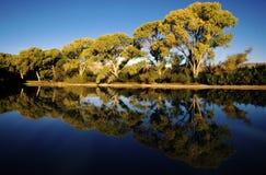 Reflexões bonitas Imagem de Stock Royalty Free