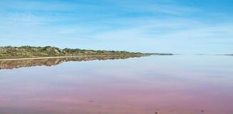 Reflexões cor-de-rosa do lago fotografia de stock royalty free