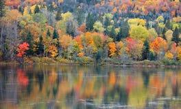 Reflexões da árvore do outono em Saint Maurício de Riviere fotografia de stock