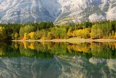 Reflexões da floresta e da montanha Fotos de Stock