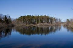 Reflexões da lagoa Fotos de Stock Royalty Free