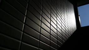 Reflexões da sombra foto de stock