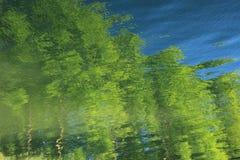 Reflexões das árvores no lago foto de stock royalty free
