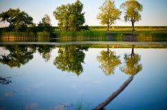 Reflexões de árvores verdes, do céu azul e das nuvens no lago calmo da água Fotografia de Stock Royalty Free