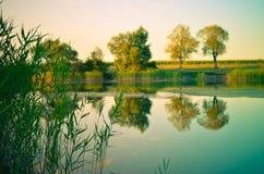 Reflexões de árvores verdes, do céu azul e das nuvens no lago calmo da água Fotos de Stock