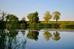 Reflexões de árvores verdes, do céu azul e das nuvens no lago calmo da água Imagem de Stock