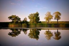 Reflexões de árvores verdes, do céu azul e das nuvens no lago calmo da água Fotos de Stock Royalty Free