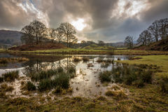 Reflexões de Elterwater Imagem de Stock Royalty Free