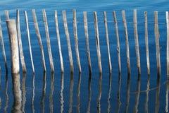 Reflexões de madeira da cerca imagem de stock royalty free