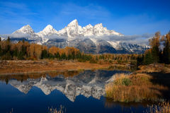 Reflexões de Teton foto de stock royalty free