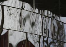 Reflexões distorcidas Imagem de Stock