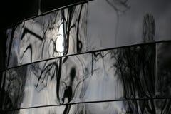 Reflexões distorcidas Fotografia de Stock