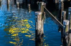 Reflexões do guindaste amarelo entre pilhas Fotos de Stock