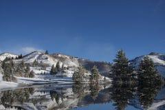 Reflexões do inverno imagem de stock royalty free
