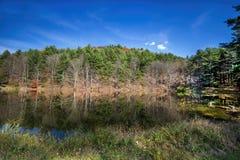Reflexões do lago Imagens de Stock