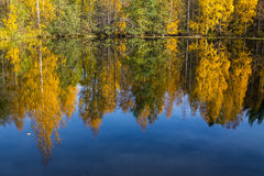 Reflexões do lago autumn Fotos de Stock
