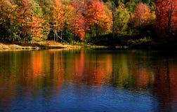 Reflexões do outono Imagens de Stock