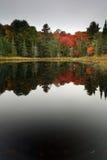 Reflexões do outono Foto de Stock