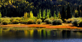 Reflexões do outono Imagem de Stock Royalty Free