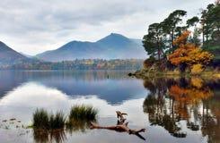 Reflexões do outono no Crag do Friar Fotografia de Stock
