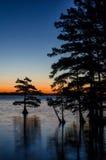 Reflexões do Predawn, lago Reelfoot, Tennessee fotografia de stock