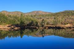 Reflexões do rio Imagens de Stock