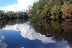 Reflexões do rio de Suwannee Fotografia de Stock