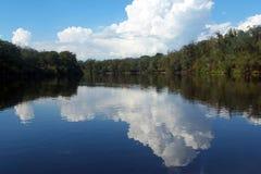 Reflexões do rio de Suwannee Imagem de Stock Royalty Free