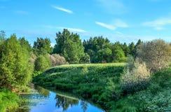 Reflexões do rio do verão Imagens de Stock