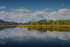 Reflexões do Tetons grande imagens de stock royalty free