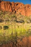 Reflexões em Glen Helen Gorge, Território do Norte, Austrália fotografia de stock