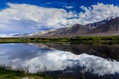 Reflexões em um lago Imagem de Stock