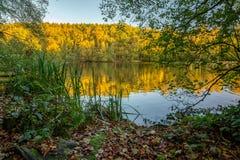 Reflexões em uma noite do outono fotografia de stock royalty free