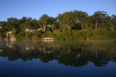 Reflexões; Imagem de espelho Foto de Stock Royalty Free