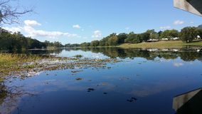 reflexões laterais do rio Imagem de Stock