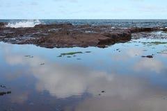 Reflexões litorais Imagem de Stock