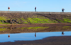 Reflexões na doca de Puerto de la Cruz Imagens de Stock