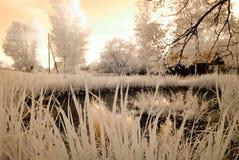 Reflexões no lago Imagem infravermelha Imagem de Stock Royalty Free